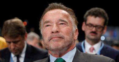 Arnold Schwarzenegger Tersungkur Kepalanya Ditendang dari Belakang