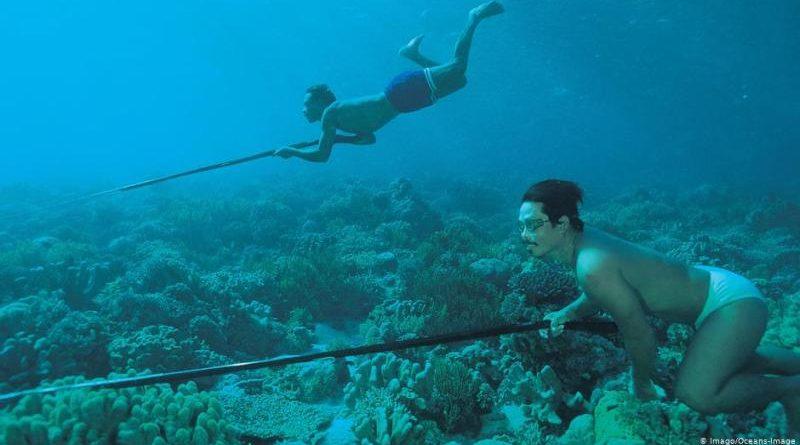 Suku Bajau Bisa Menyelam 70 Meter Tanpa Alat Berkat Limpa yang Besar